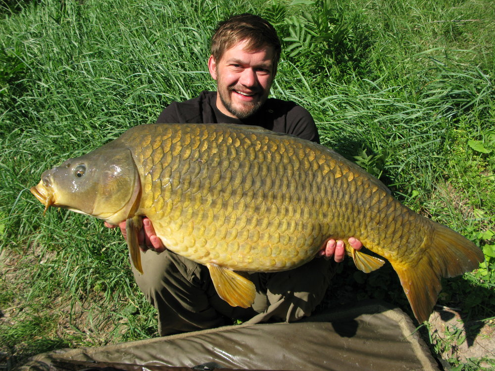 Roman with his mid-30 common