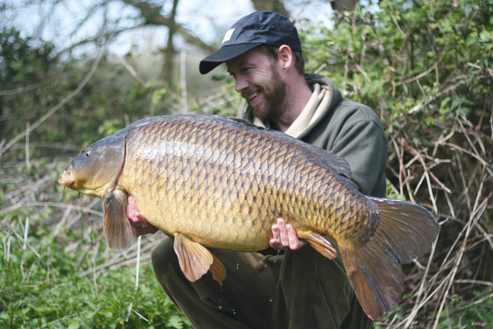 . My first fish of the new season on the Church Lake. Sid at just over 36lb, and over 50 years old.