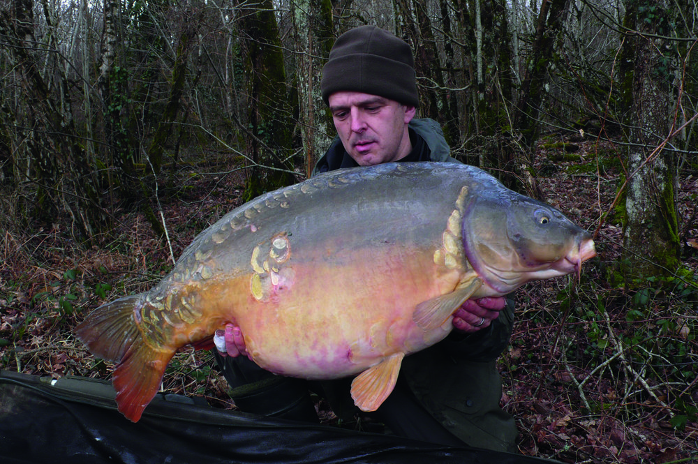 A 58lb mirror in the depths of winter on a fishmeal. One show in December was the key to finding the spot where they spent the whole winter