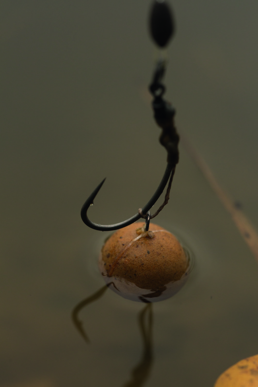 Match the hatch Krill pop-ups on Spinner rigs were his go to rig.