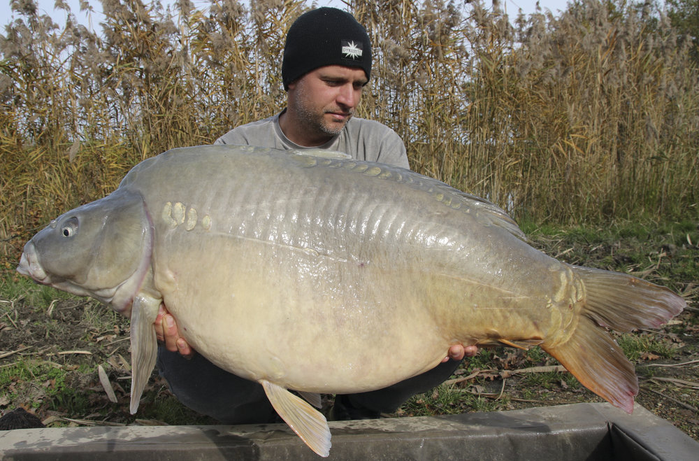 Srečko and his biggest carp of the session at 26.4kg.