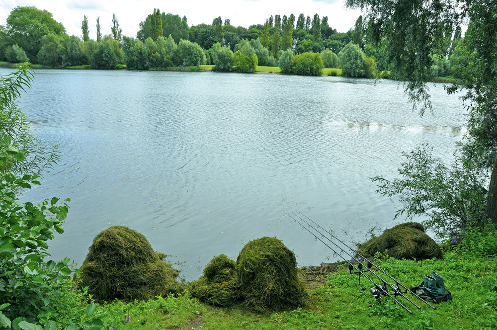 It can be long, arduous work but using a cast-able weed rake, permits me to clear a spot out in the lake, once I've found an area of suitable, low-lying weed (to remove)