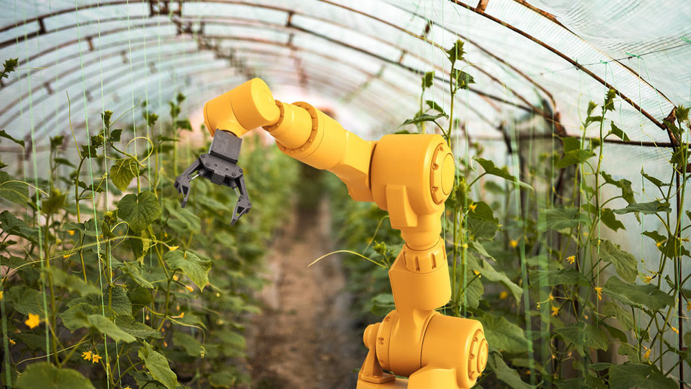 robots-indoor-farming_1200x675_hero_020917.jpg