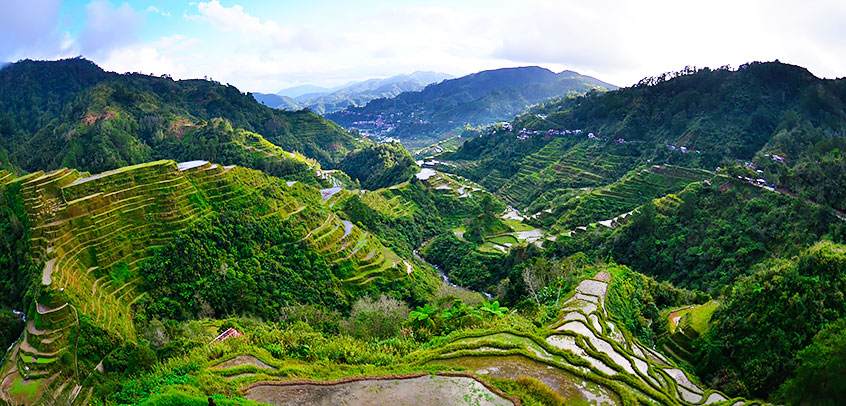 Copy of Banaue rice terraces