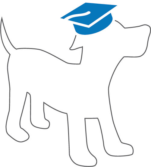 Professional Dog Trainer — Good Dog Academy