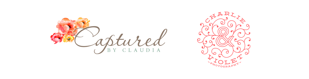 cv and claudia logo.png