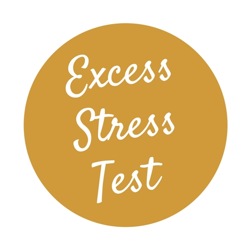 Excess Stress Test (2).jpg