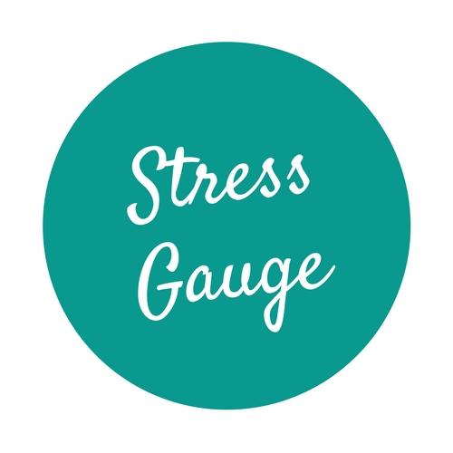 Stress Gauge (1).jpg