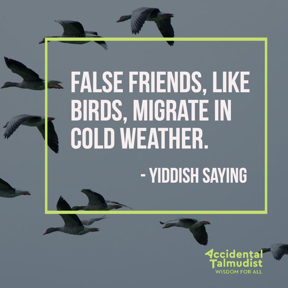 false friends.jpg