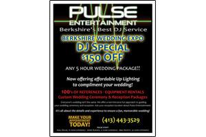Graphic Design Pulse Entertainment