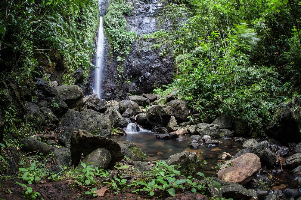 © Te Mana Travels — Waterfall