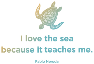 Te Mana Travels Details webpage quote: I love the sea because it teaches me, but Pablo Neruda.