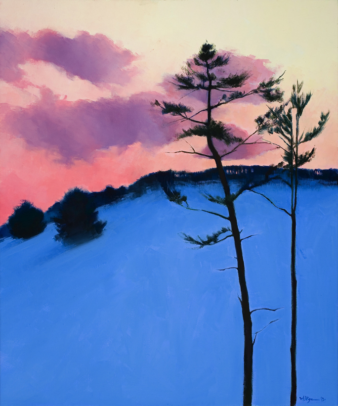 """Evening Pines"" - Michael Koza"