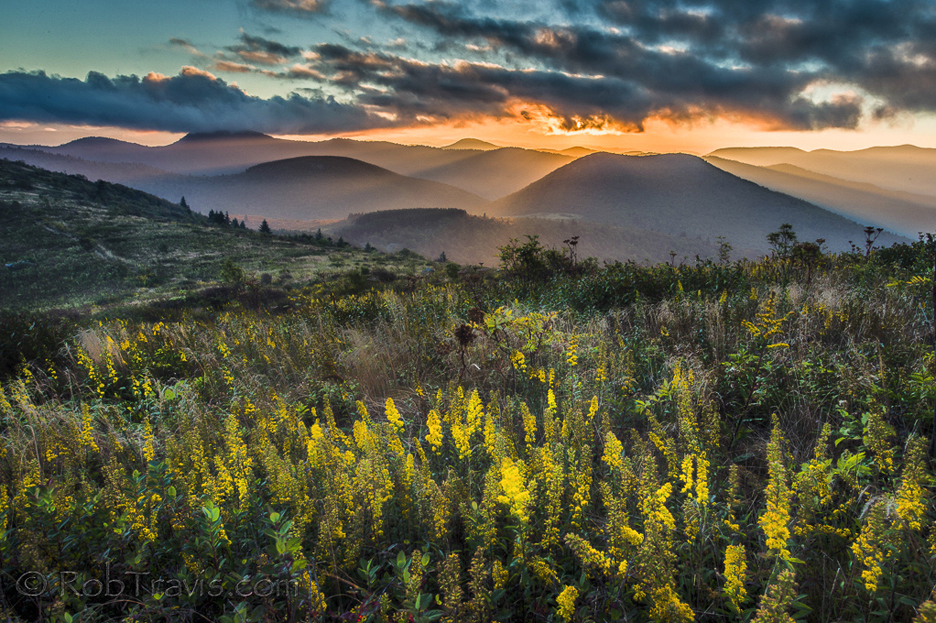 """Sam Knob Sunset""- Rob Travis"