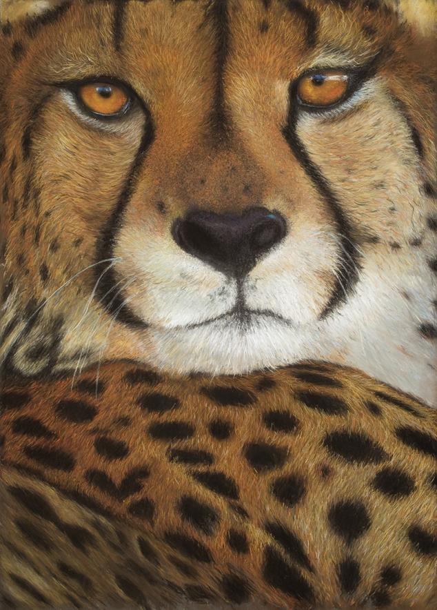 """""""Tess's Cheetah"""" - Linda Sarchet"""
