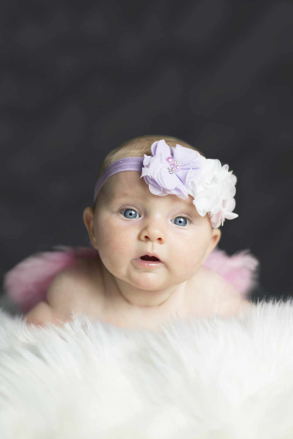 Baby Girl Photo Studio Shoot
