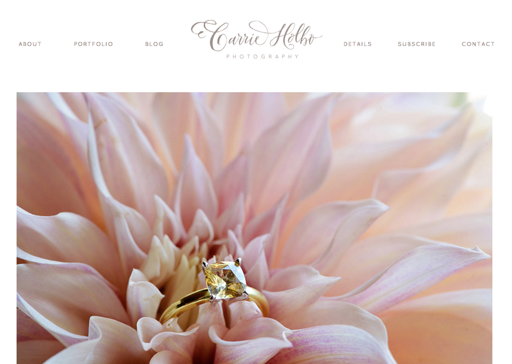 Logo | Carrie Holbo Photography