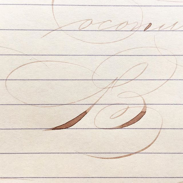 Tried this B again today. Version 3. It's been (and still is) a work in practice since first studying it this summer 😅 #postyourpractice #calligraphycloseups #ornamentalpenmanship . . . . #b #calligraphy #pointedpen #spencerian #zanerian #calligraphymasters #iampeth #moderncalligraphy #modernpenmanship #penmanship
