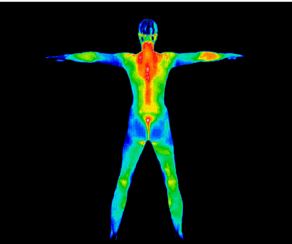 Full Body Imaging