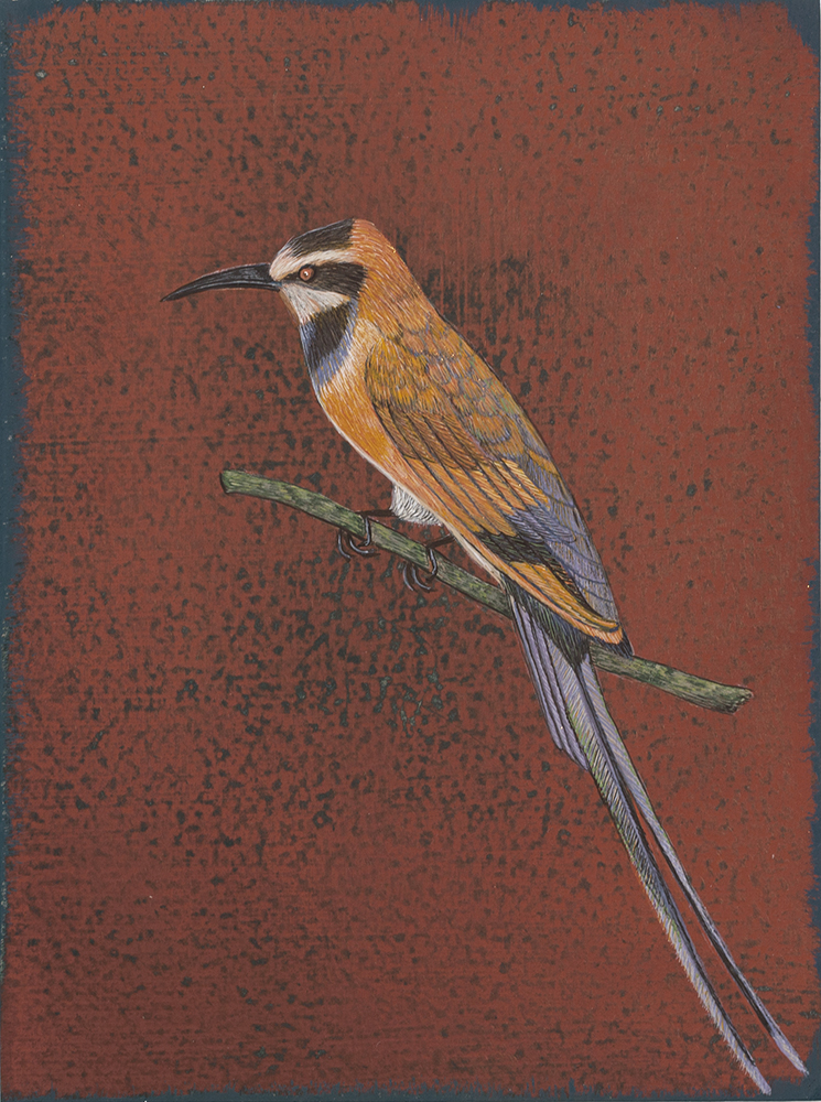 """Antonia Munroe, The White-throated Bee Eater,  2016, pigment dispersion on panel, 8 3/4 x 6 5/8"""" framed"""