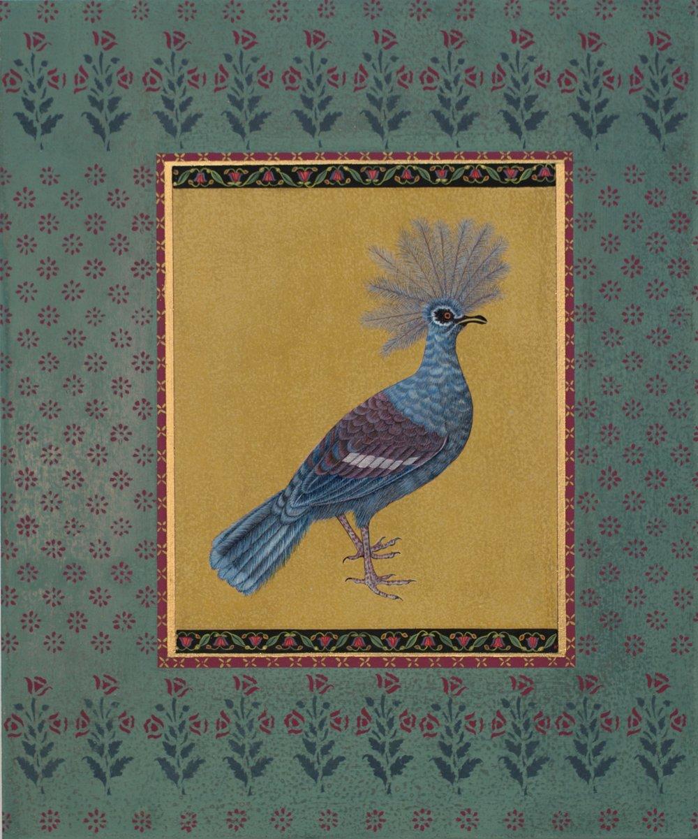 a_munroe__a_crowned_pigeon_lo-res.jpg