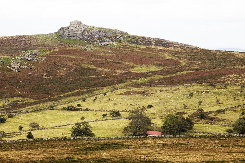 Dartmoor1_10.5x7.jpg