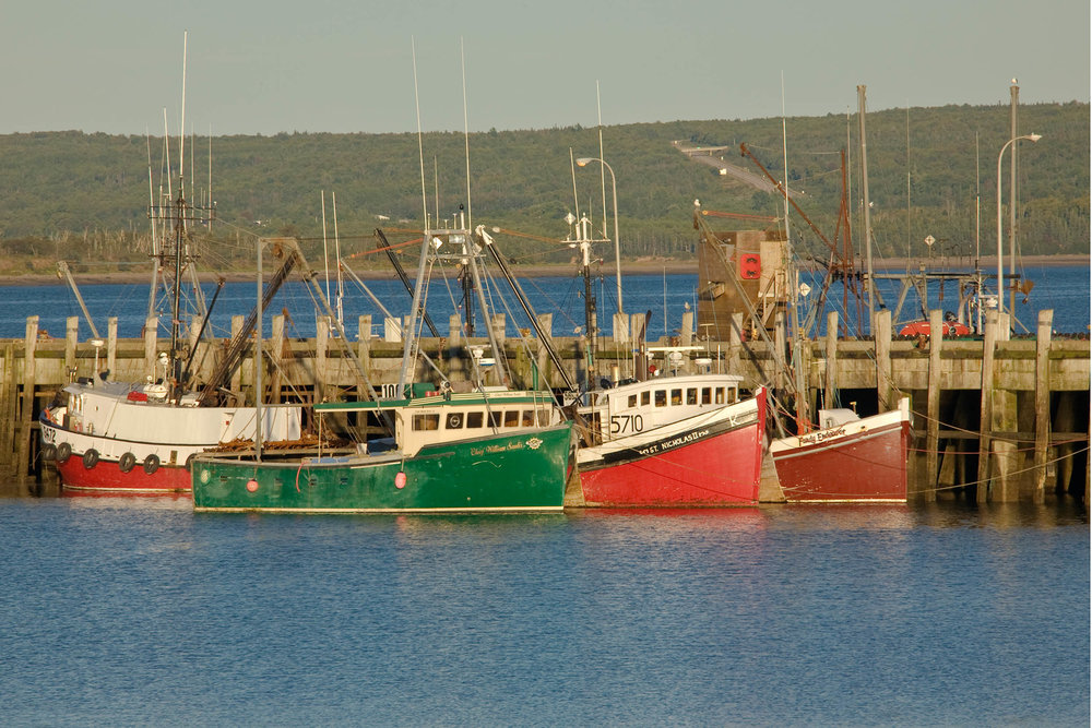 Digby2-Harbor1_4x6.jpg