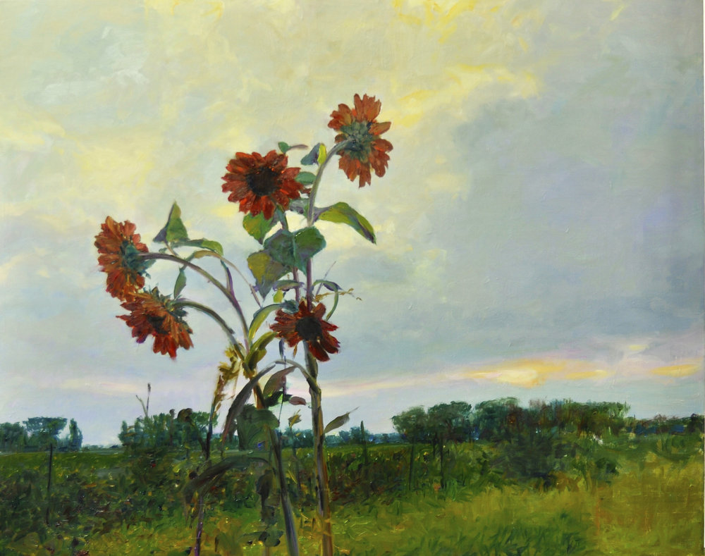 Sunflowers Colors 24x30, O:C.jpg
