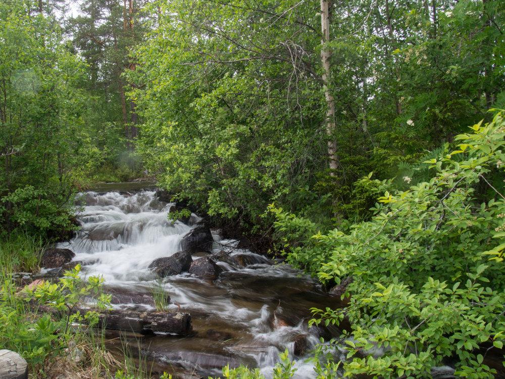 Storforsen Little Waterfall_Sm.jpg