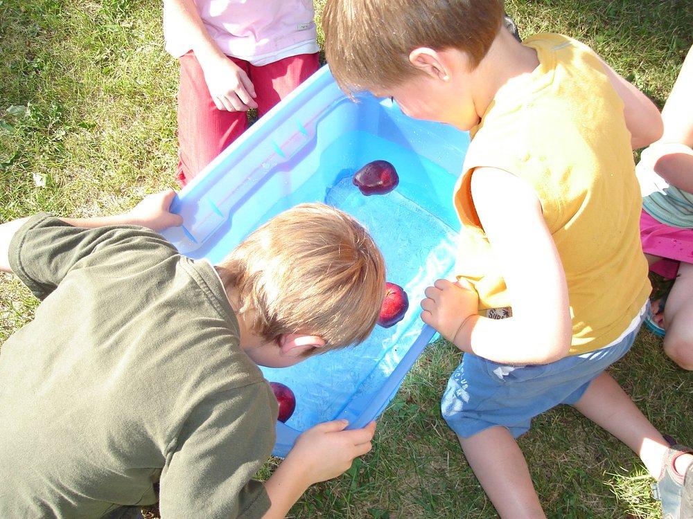 Parkvale Picnic Aug 2008 026.jpg