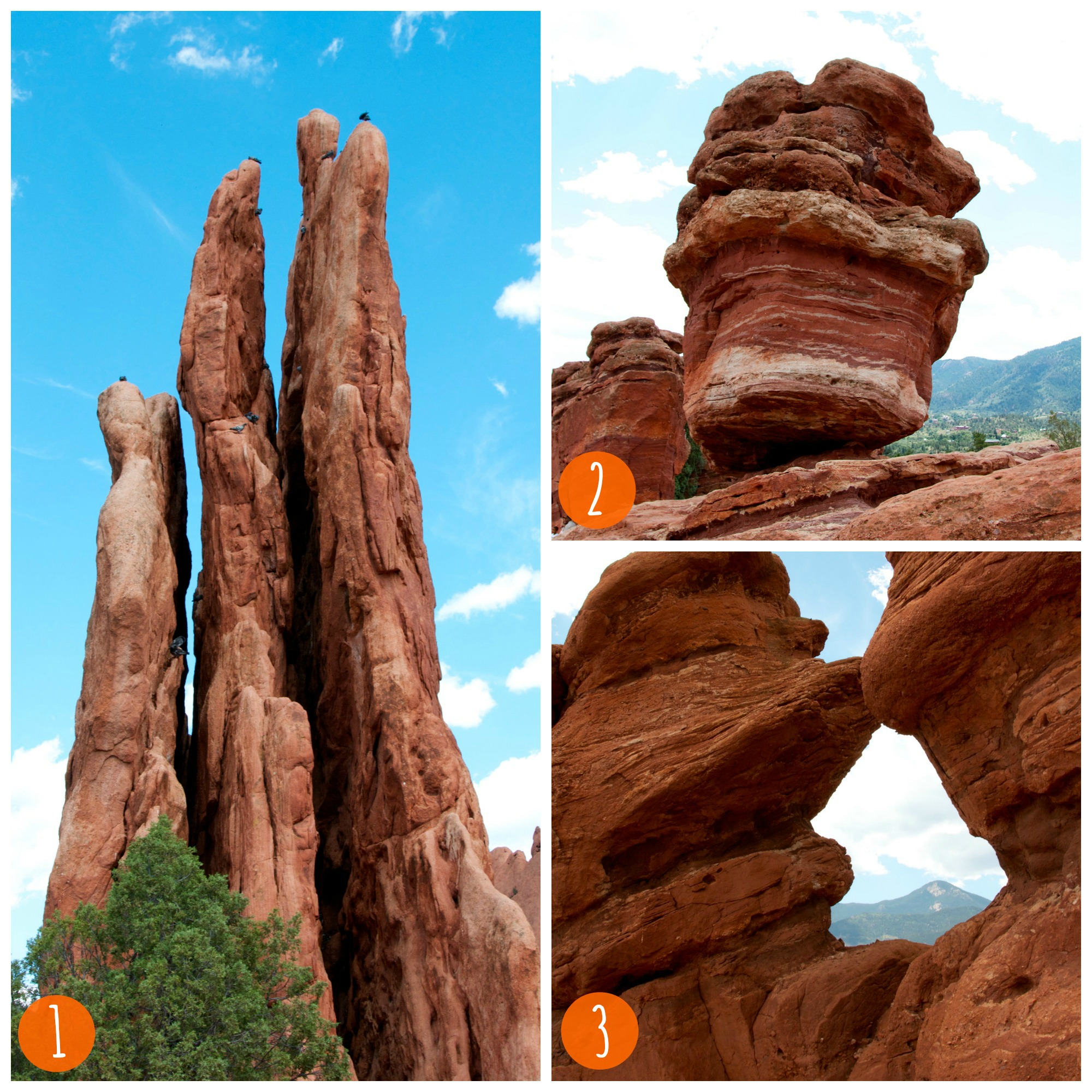 Garden of the Gods collage