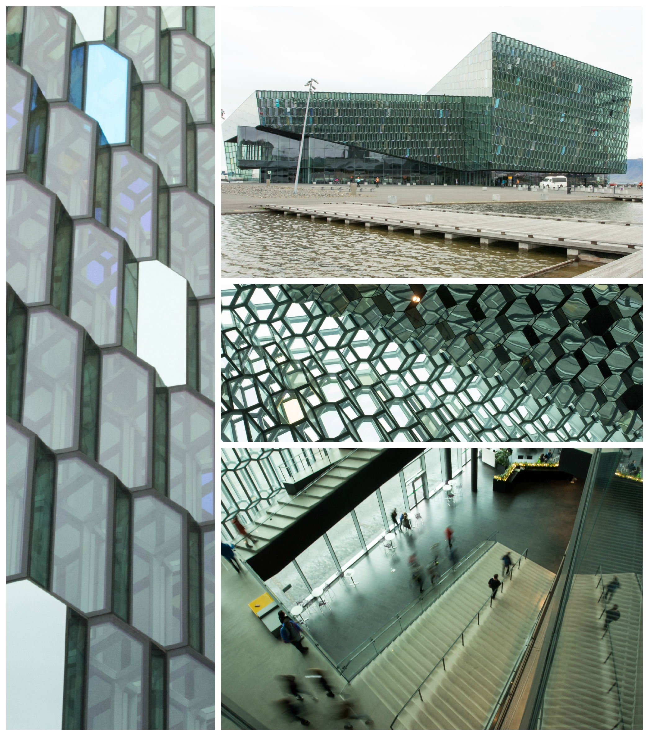 Harpa_Collage