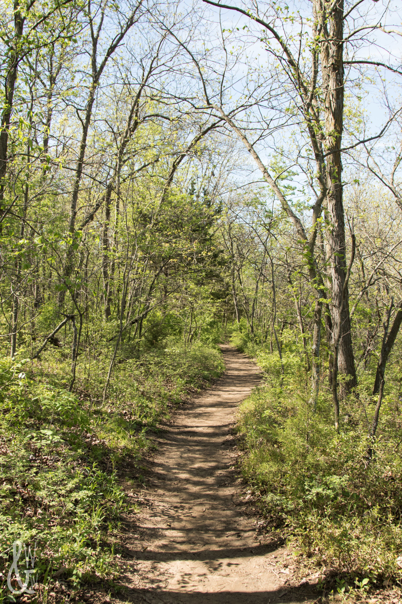 Practicing my photography during my April photo challenge while hiking at Shawnee Mission Park!