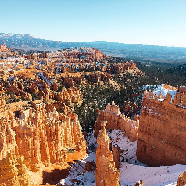 Happy Thanksgiving everyone, from the beautiful Bryce Canyon!! So grateful for the beauty and wonder that I live near!  @whitneyreneephoto #whitneyreneephoto #nature #naturephotography #brycecanyon #brycecanyonnationalpark #thanksgiving #givethanks #family #mastinlabs @mastinlabs #filmborn