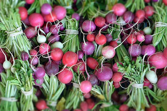 Kelowna Farmers' & Crafters' Market - Global Dish - Stephanie Arsenault