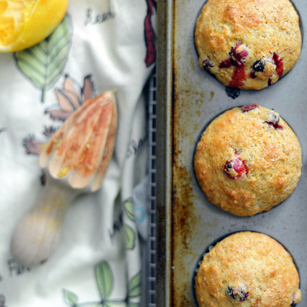 Cranberry Orange Muffins - Global Dish - Stephanie Arsenault