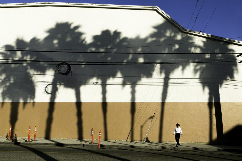 web - street LA -_.jpg
