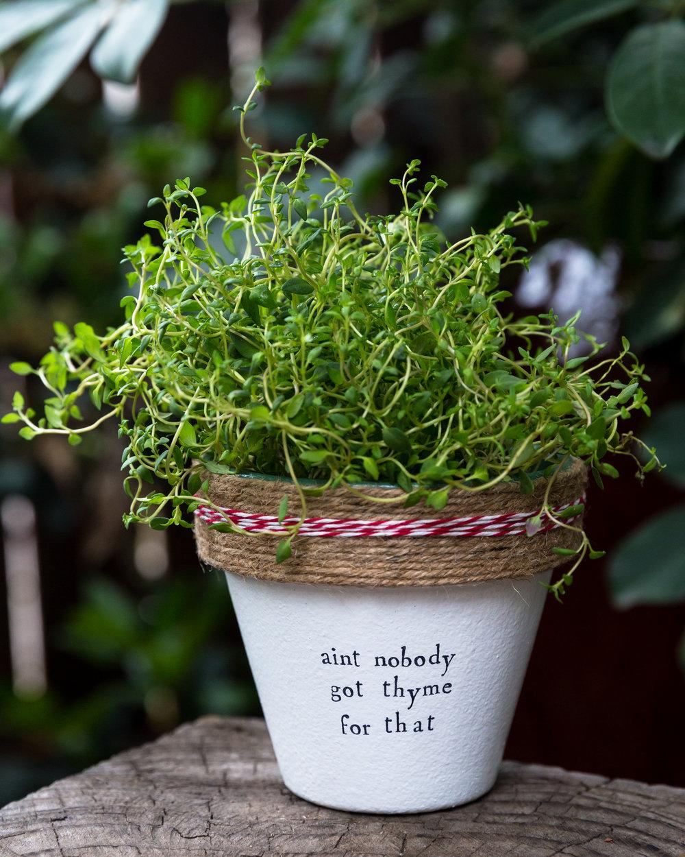 170510 plant puns - 4792.jpg