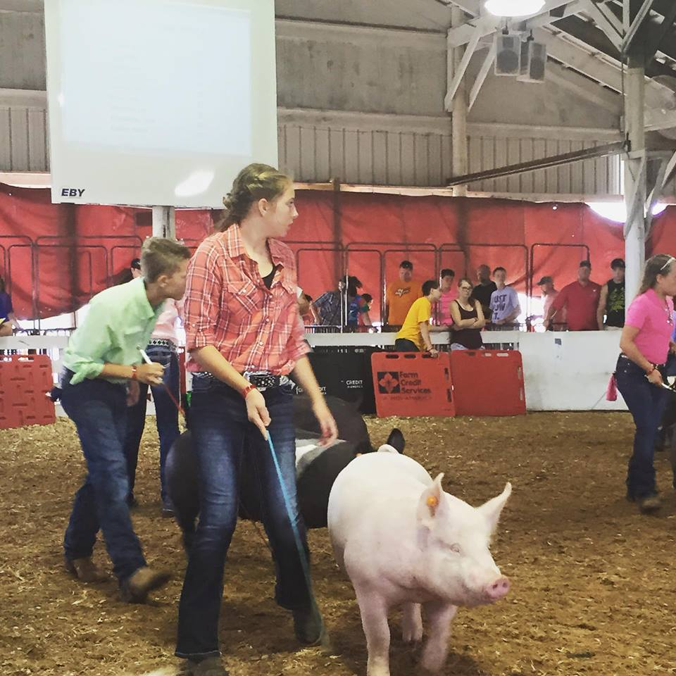 Courtney Hamilton, 4H County Pride