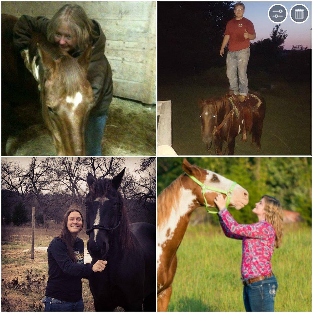 horse-collage.jpg