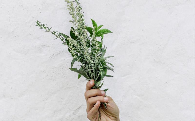 Best-Herbs-Grill-Small.jpg