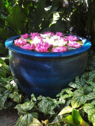 Water-Garden-Container.jpg