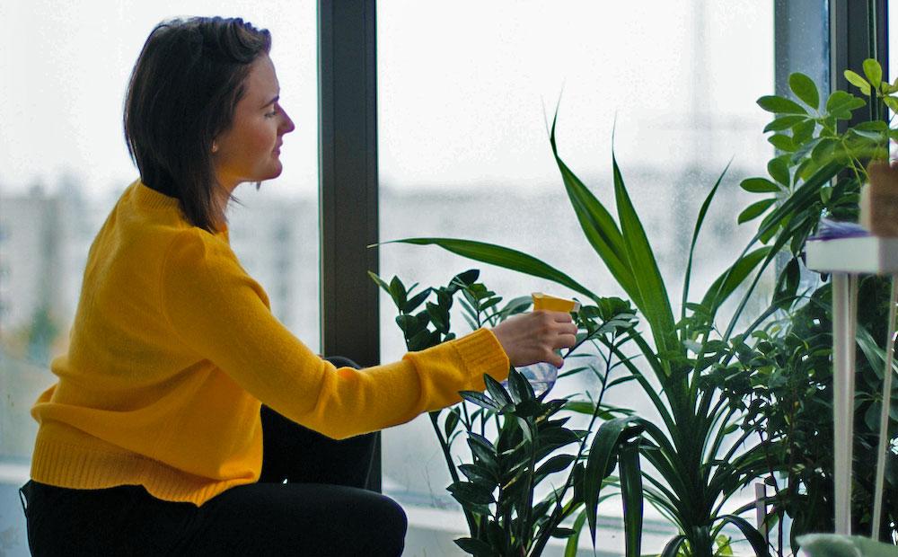 woman watering indoor plants