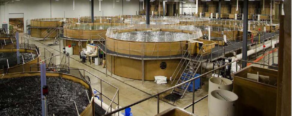 Sea Dream facility.png