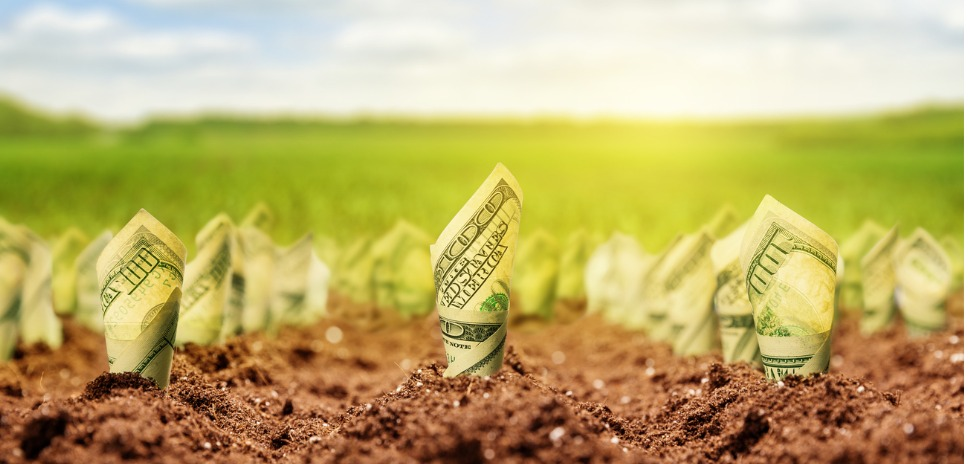 Agricultural-Crowdfunding-concept_Nomadsoul1_istockphoto_american-dollars-grow-from-the-ground-picture-id510948629-1.jpg