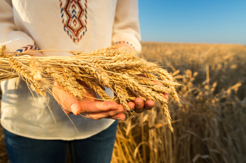 woman holding wheat