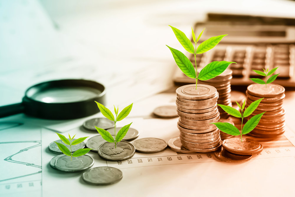 plants growing out of coins.jpg
