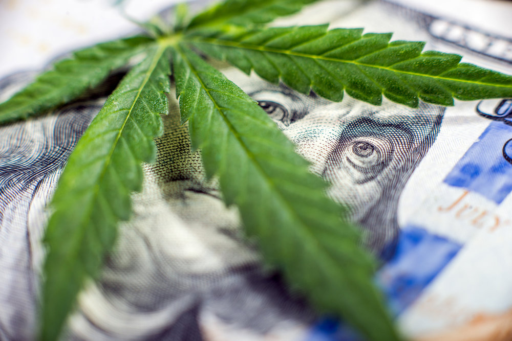cannabis plant laying over US hundred dollar bill