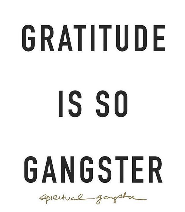 So gangsta ✨ . . . . . . . . #supportcreativity #grateful #attitudeofgratitude #motivationalquotes #inspo #instagood #happyfriyay #lifesgood #godisgood #ganggang