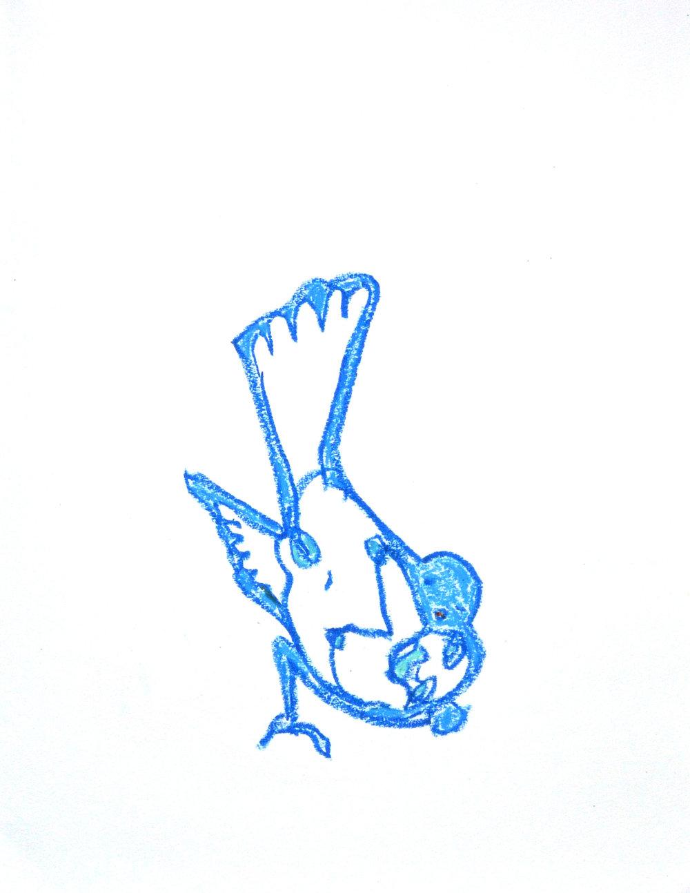 bird , 2018. Oil Pastel. 14 x 11 in.